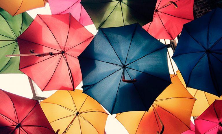 Imagen portada Salimos a cazar colores
