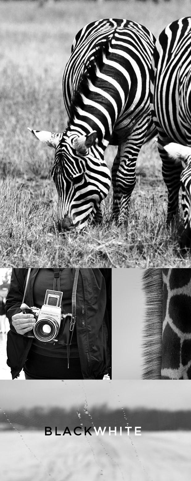 FOTOS-LIBRES-HELLO-CREATIVIDAD-BALCK-WHITE