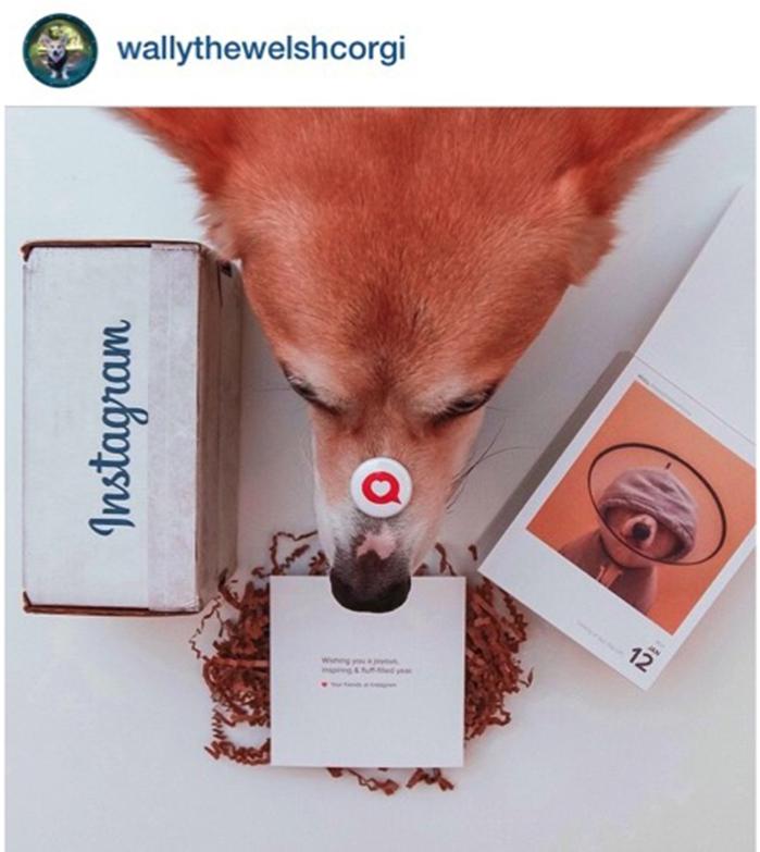 calendario instagram