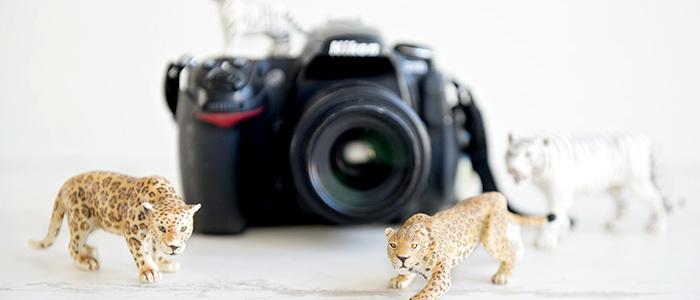 OK_FOTOGRAFIA-BASICA
