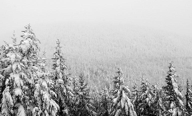 Imagen portada |H!C Life| El frío y novedades que son secreto