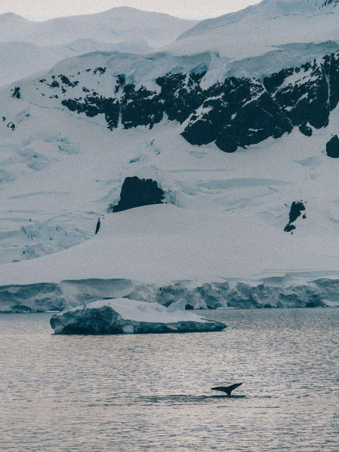 fotos de paisajes en invierno