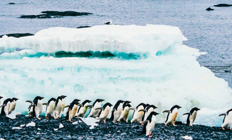 Imagen portada 9 consejos para hacer fotos de paisajes en invierno