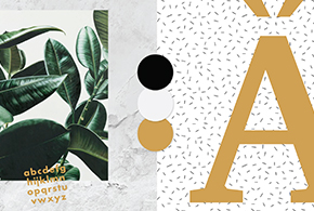 curso-branding-diseno-imagen-marca-online-290x195-Destacada-shop