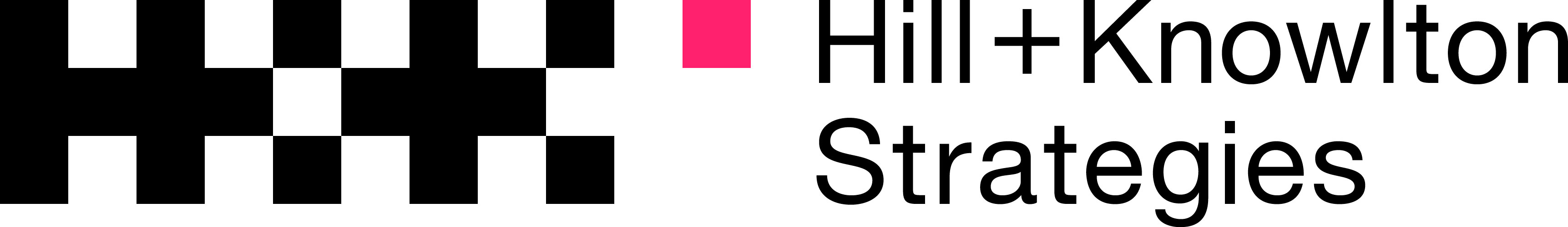 Silvia Parra – H+K STRATEGIES logo