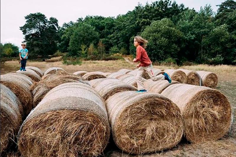 aprende-sobre-composicion-fotografica-para-fotografiar-a-niños