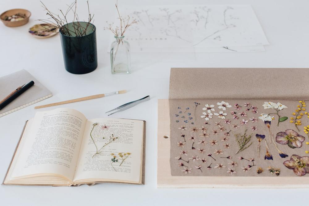 curso online de flores prensadas