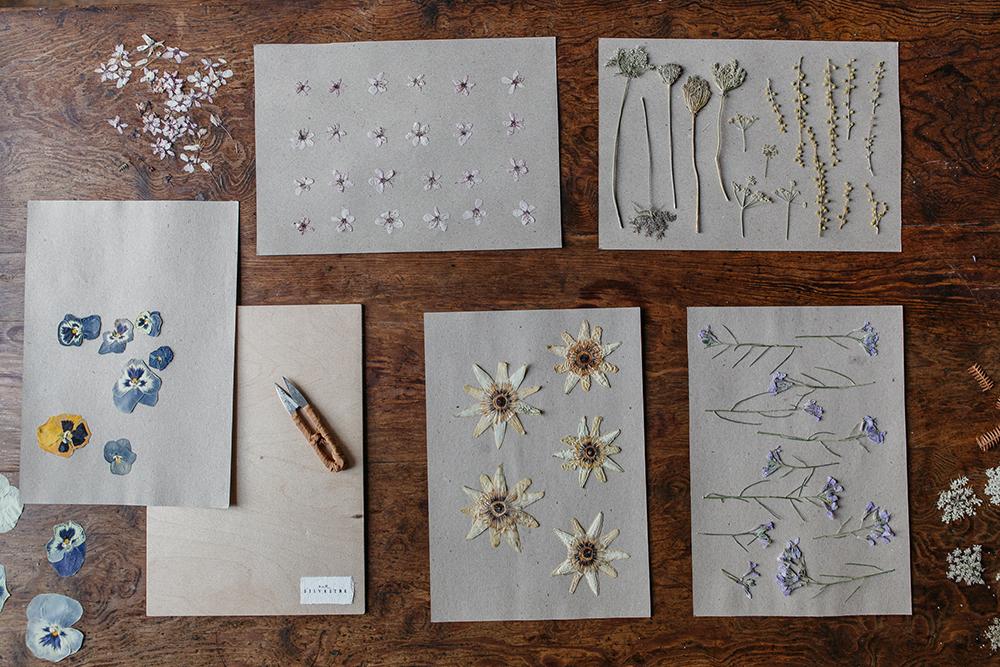 curso de flores prensadas online