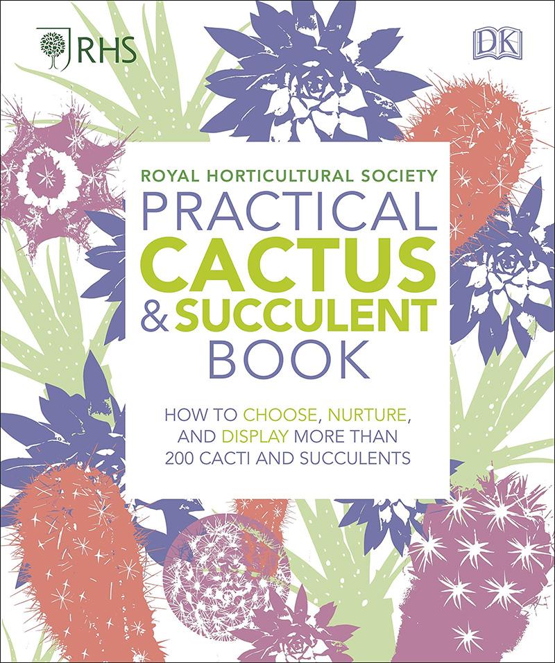 como cuidar cactus y suculentas