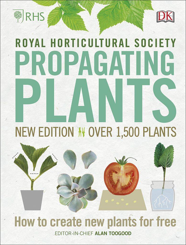 propagacion de las plantas de interior
