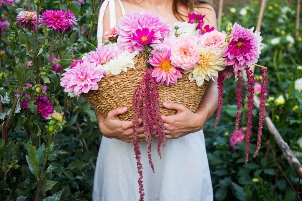 floritismo ingeniera de flores